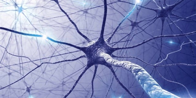 Estudio sobre la Esclerosis Múltiple en sangre, vía Infosalus.com